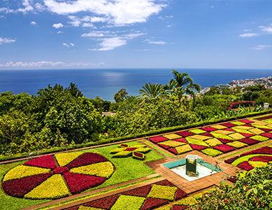 Madere Funchal jardin botanique