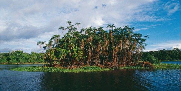 Fleuve Amazonas Perou